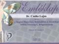 certificate_2005_2009_04