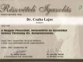 certificate_2005_2009_12