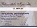certificate_2005_2009_13